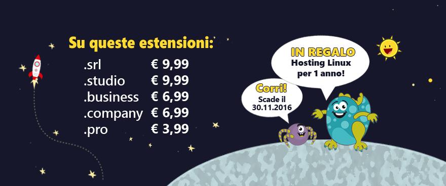 Promozione stellare su estensioni business ed hosting in omaggio per 1 anno.