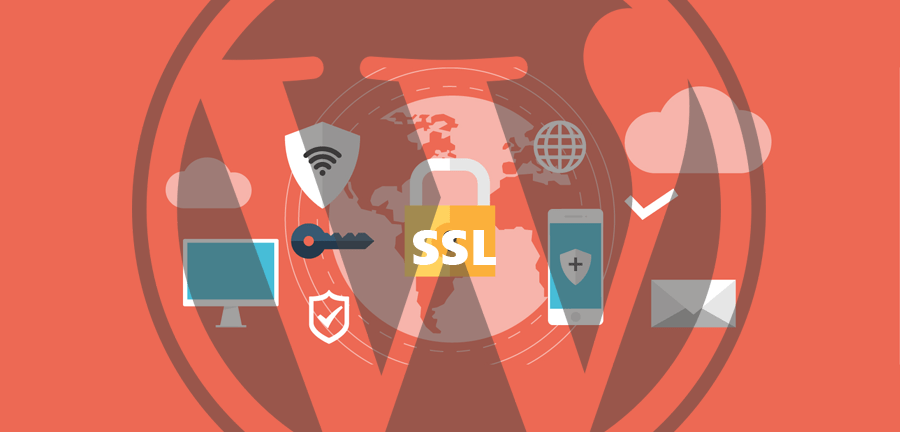Certificati SSL in crescita: il nostro supporto (specialmente per chi usa WordPress).
